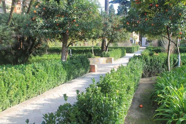 jardinsalcazar10