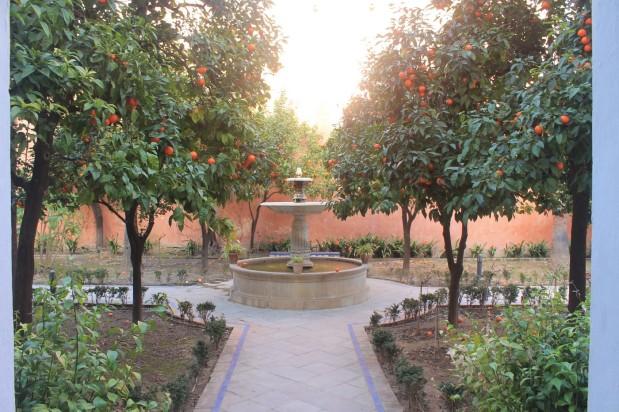 jardinsalcazar16
